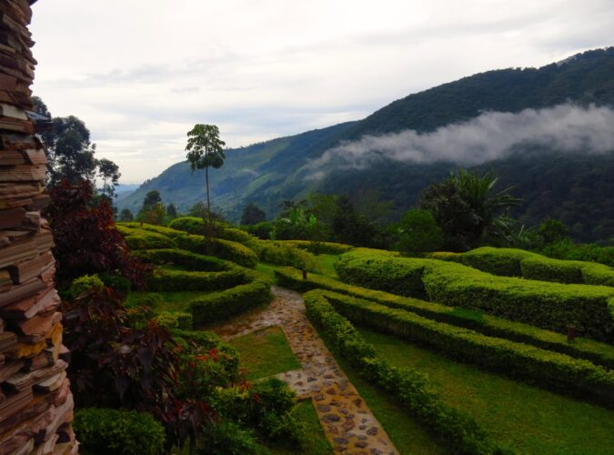 A view from our front porch outside Bwindi Impenetrable National Forest