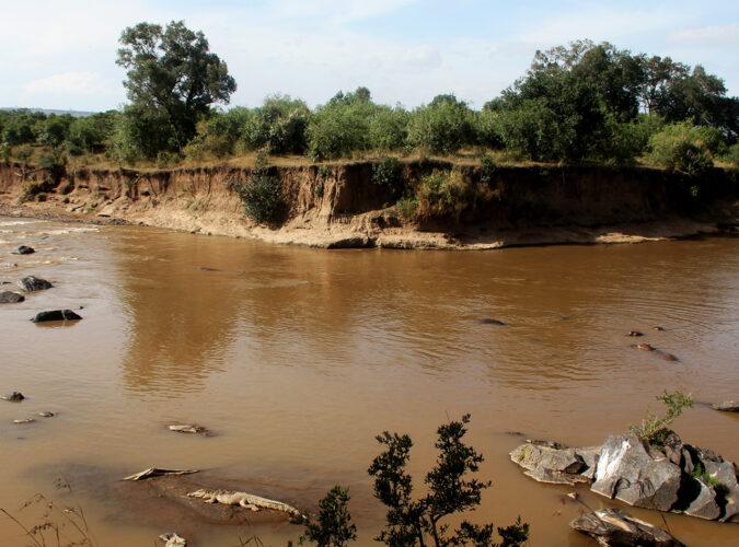 mara river2
