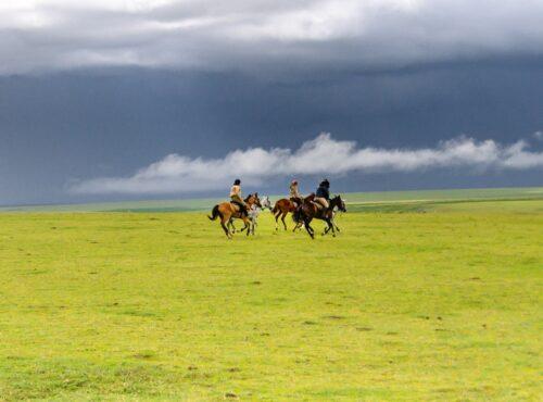 ride serengeti